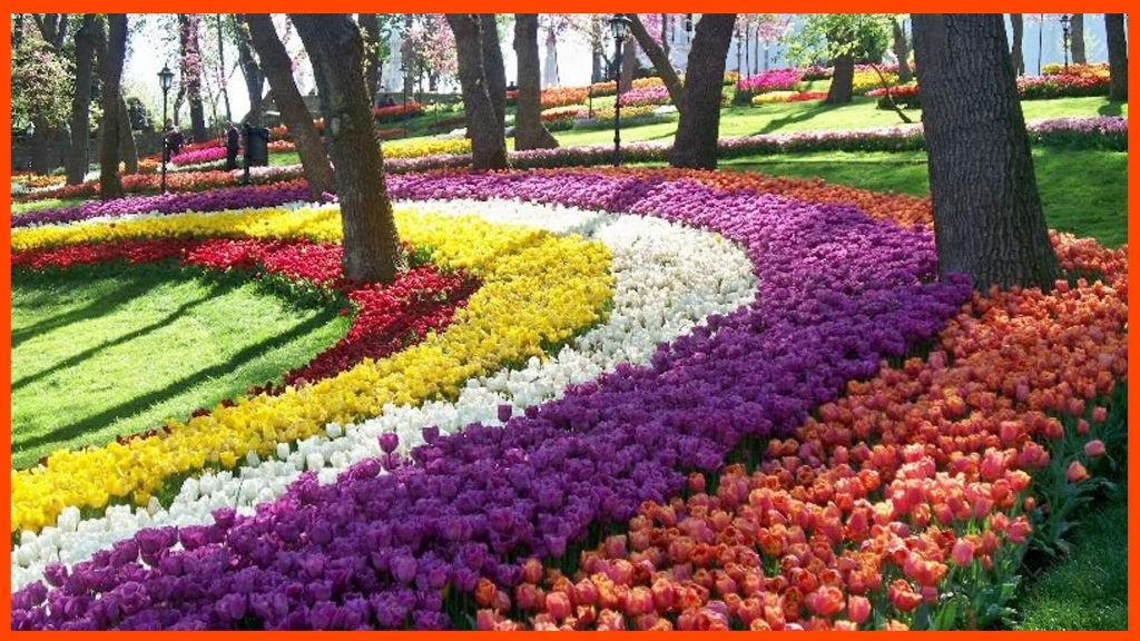 حديقة أميرجان