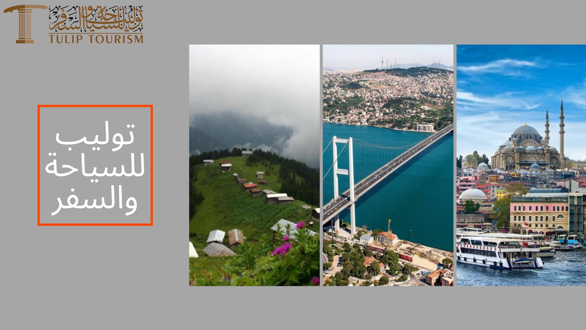 خدمة استئجار سيارة مع سائق في تركيا